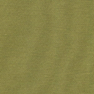 DHER1503-OLIVE